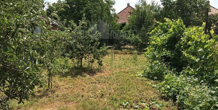predam-rodinny-dom-sladkovicovo-d1-770-7705062_2